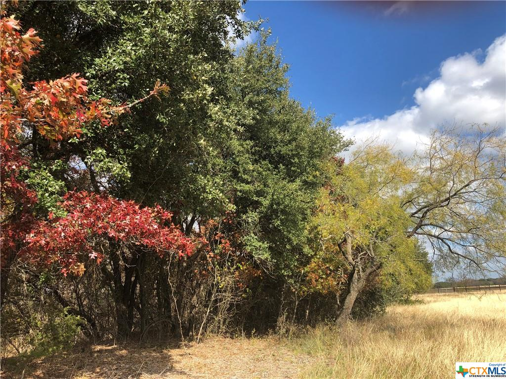 00 CR 281 #13 Property Photo - Hico, TX real estate listing