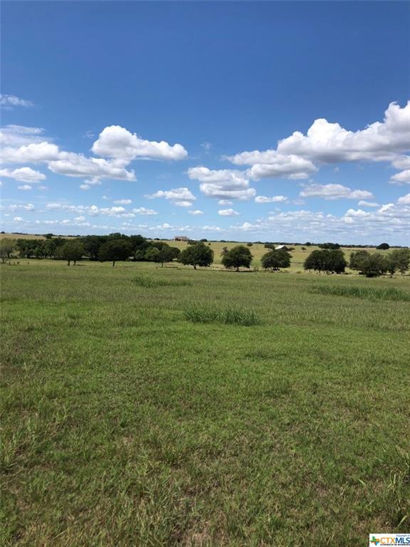 TBD FM 1295 Property Photo - Moulton, TX real estate listing