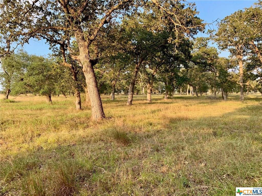 00 County Road 405 Property Photo - Edna, TX real estate listing