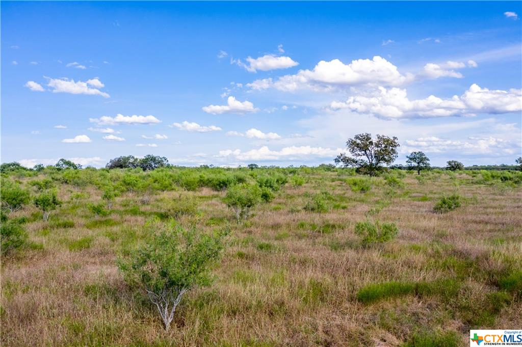 TBD Private Road 1411 Property Photo - Cost, TX real estate listing