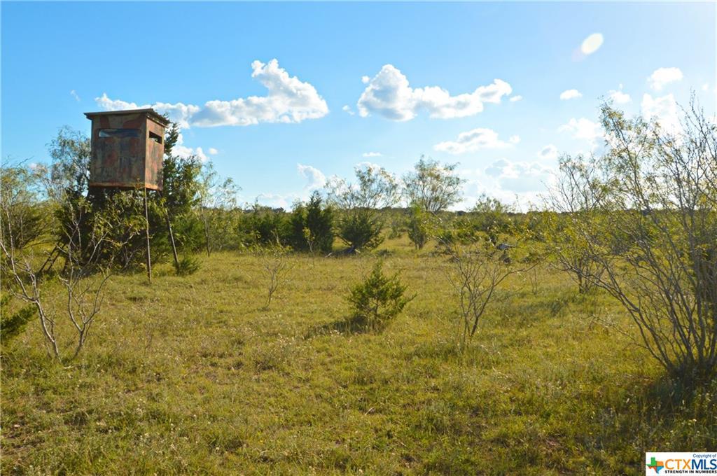 0 CR 101 Property Photo - Lampasas, TX real estate listing