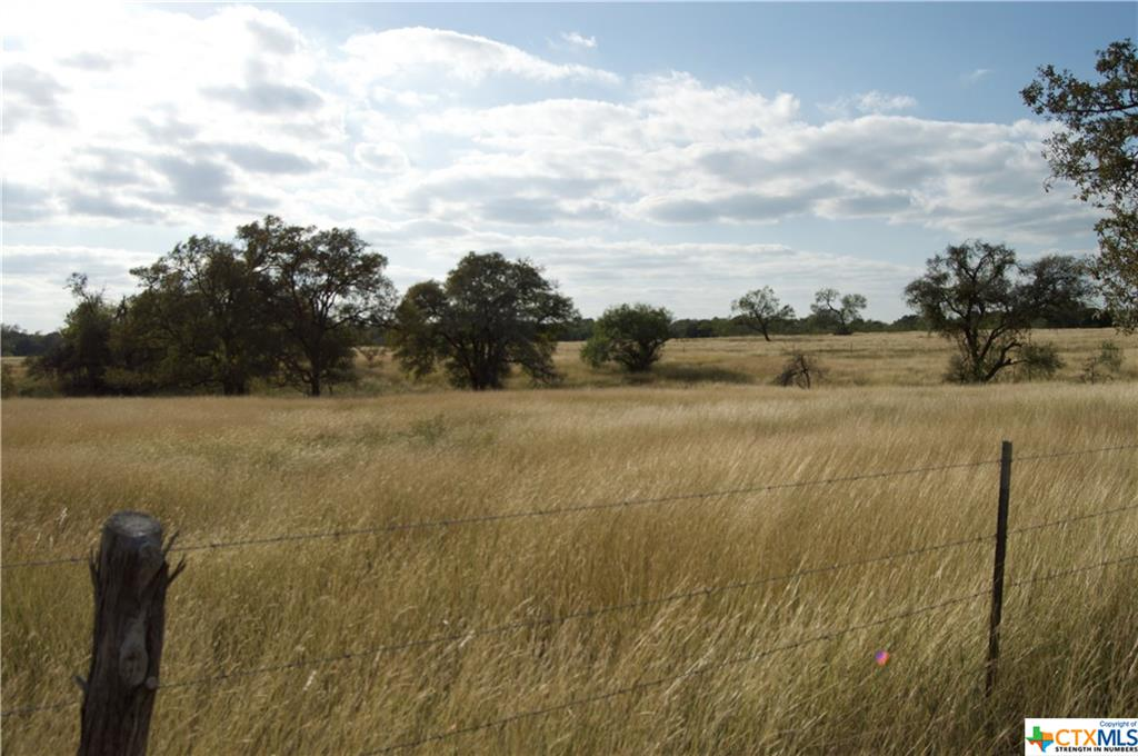 000 Bugtussle Property Photo - Luling, TX real estate listing