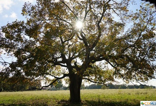E FM 485 Property Photo - Cameron, TX real estate listing