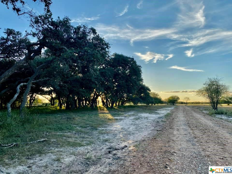 2079 Old Hwy Road Property Photo - Inez, TX real estate listing