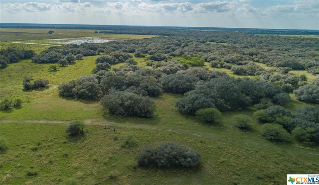 13146 County Road 360 Property Photo - Louise, TX real estate listing