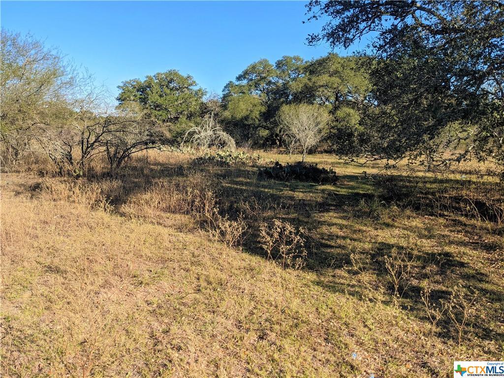 000 Matthew Adams Property Photo - Yoakum, TX real estate listing