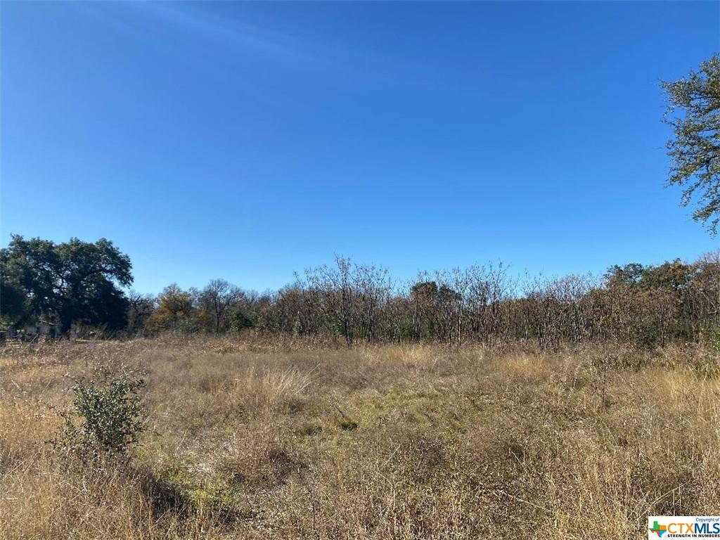 0 W Martin Luther King Jr Avenue Property Photo - Belton, TX real estate listing