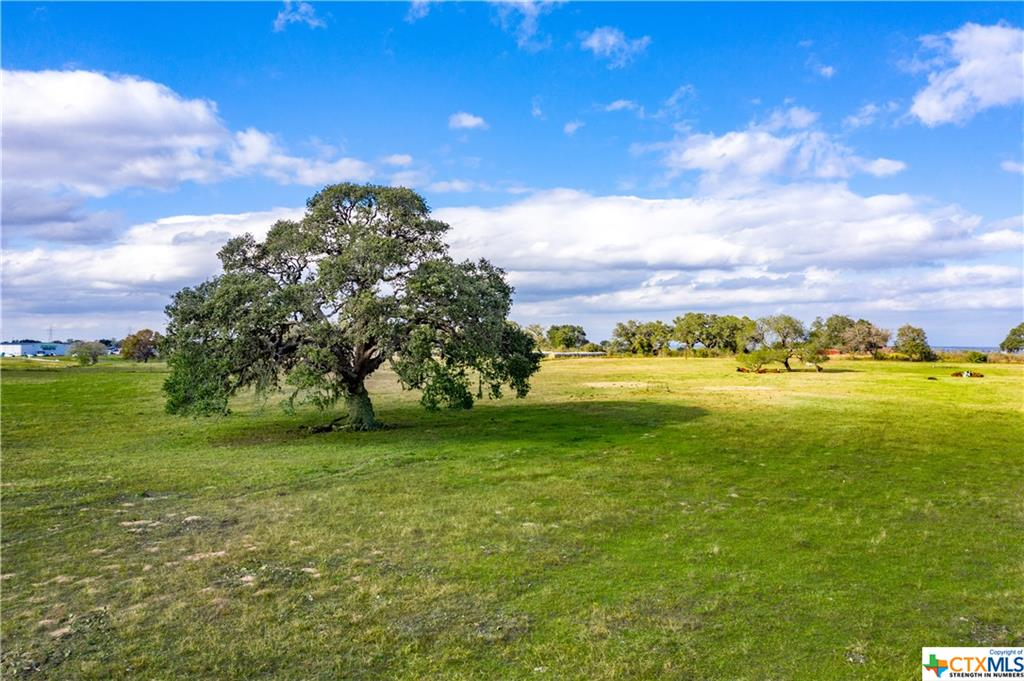 1440 Old Goliad - Tract A Road Property Photo - Cuero, TX real estate listing