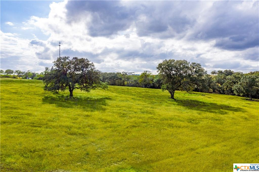 1440 Old Goliad - Tract D Road Property Photo - Cuero, TX real estate listing