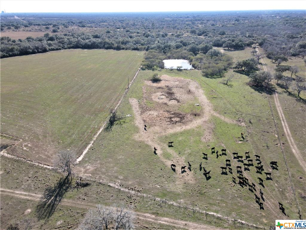 000 Fannin Road Property Photo - Fannin, TX real estate listing