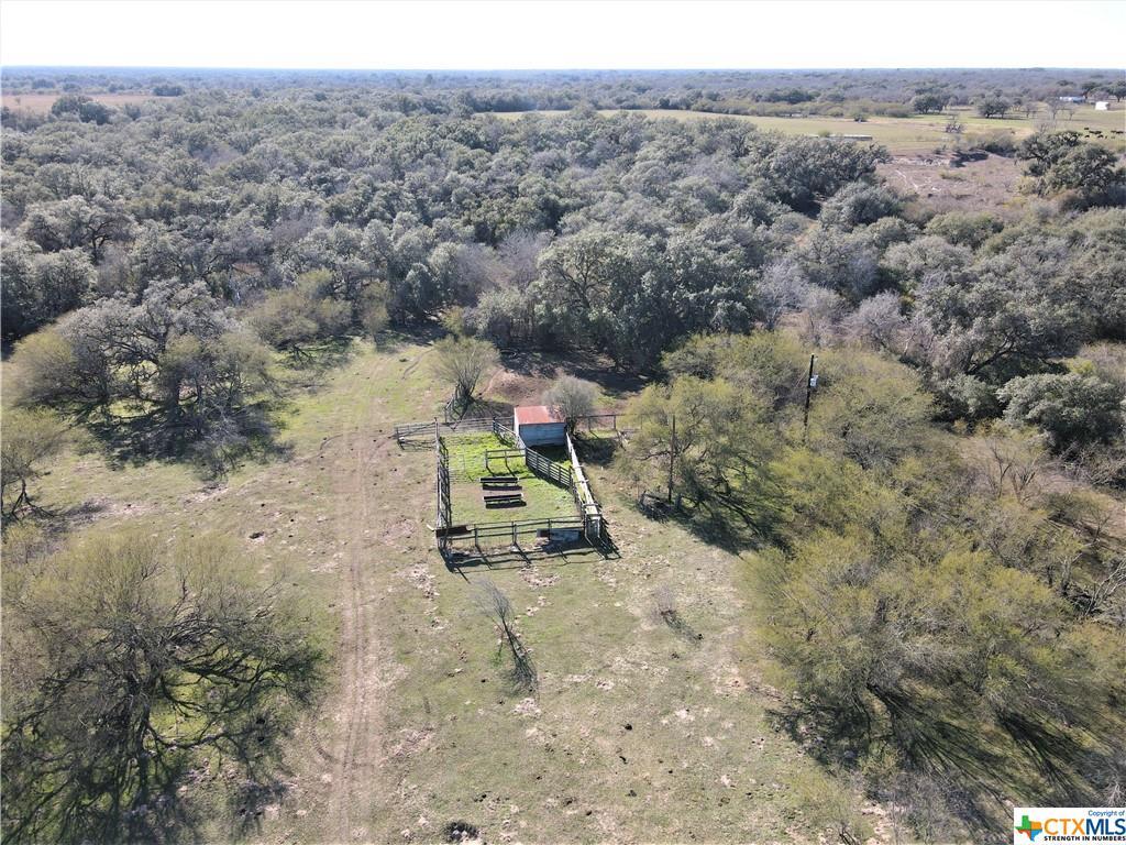 0000 Fannin Road Property Photo - Fannin, TX real estate listing