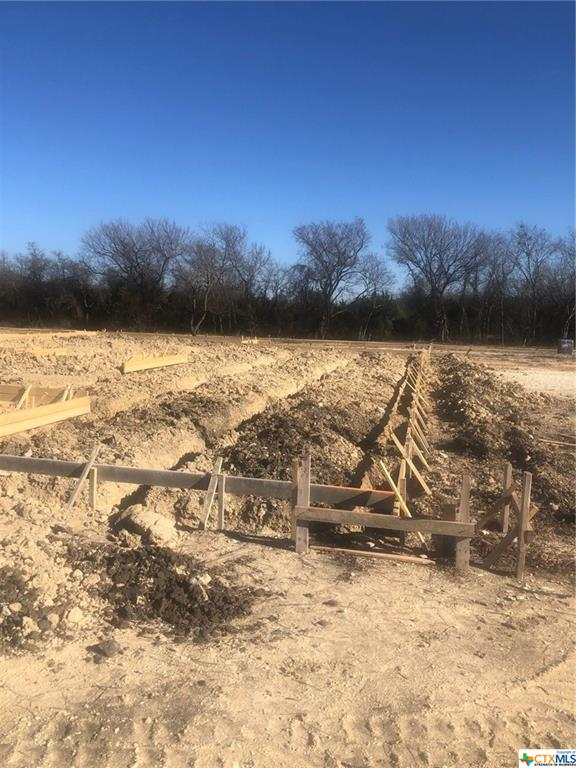 244 Pecan Meadow Lane Property Photo - Harker Heights, TX real estate listing