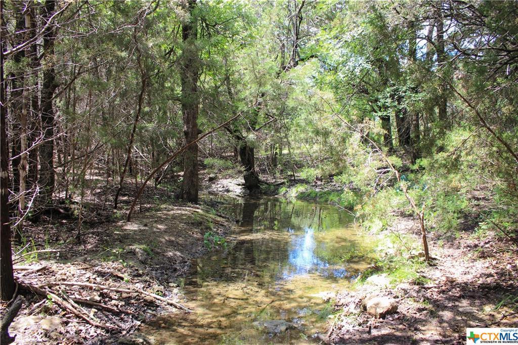 6443 Fm 2412 Property Photo - Gatesville, TX real estate listing