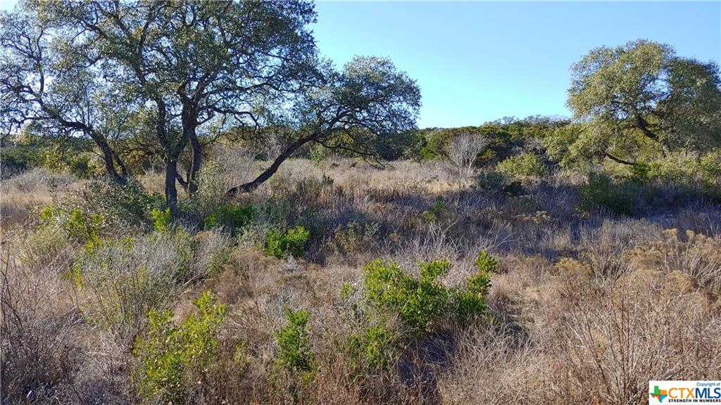 Lot 10 Private Road 2775 Property Photo - Mico, TX real estate listing