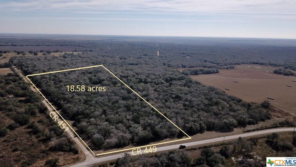 County Road 451 Property Photo - Francitas, TX real estate listing