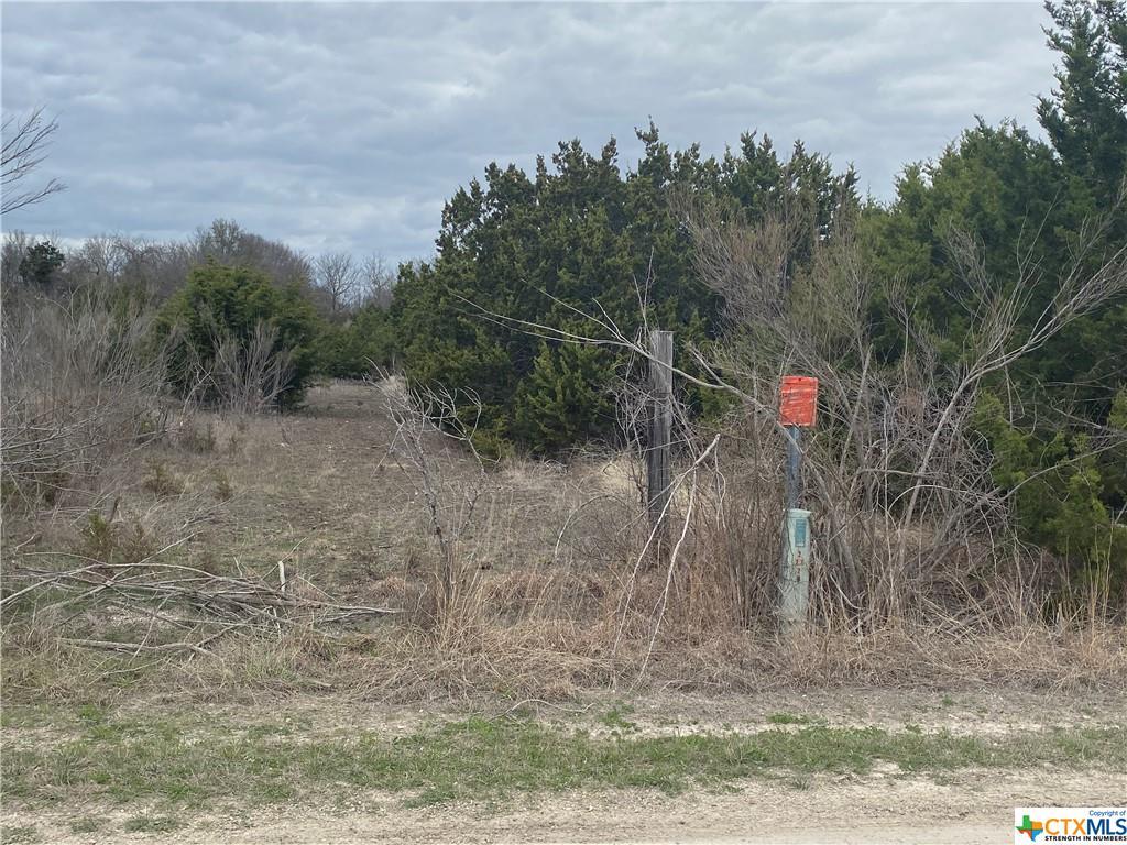 000 Avila Lane Property Photo - Briggs, TX real estate listing