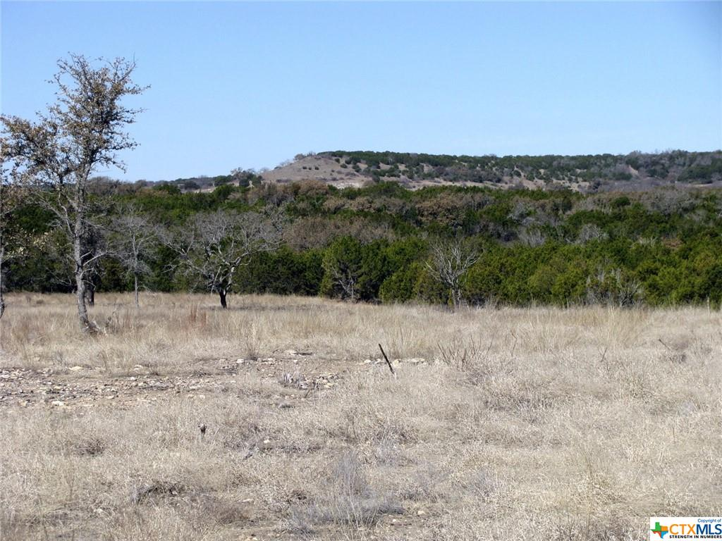 3298 Private Road 4211 Property Photo - Evant, TX real estate listing