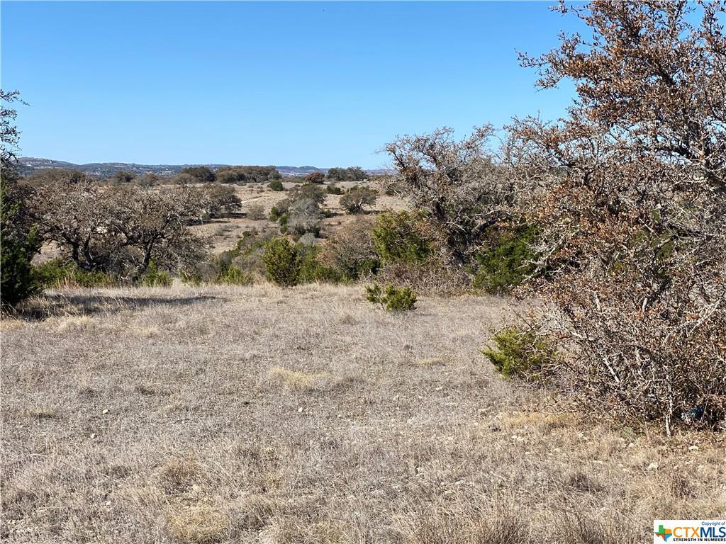 000 Byrd Ranch Rd Property Photo - Johnson City, TX real estate listing
