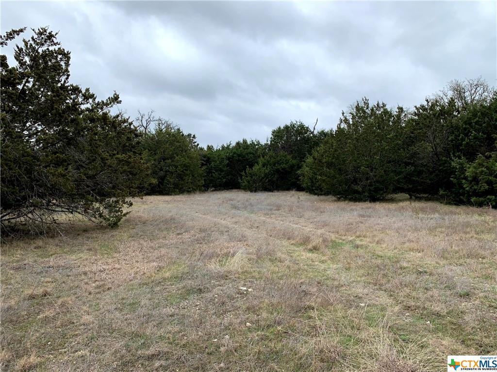 652 Fm 581 Property Photo - Lometa, TX real estate listing