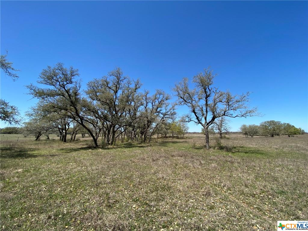 000 Prescott Road Property Photo - Goliad, TX real estate listing