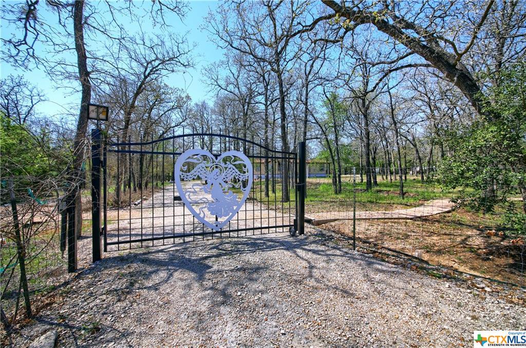 151 Spring Creek Drive Property Photo - Cedar Creek, TX real estate listing