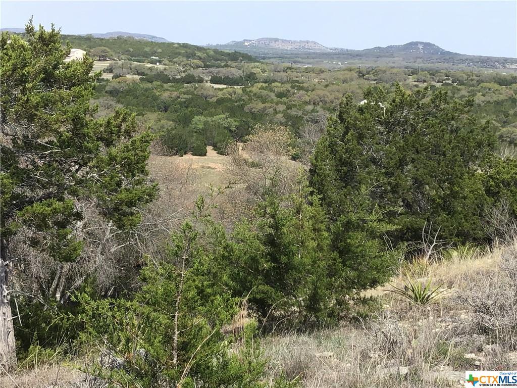 196 Venado Run Property Photo - Blanco, TX real estate listing