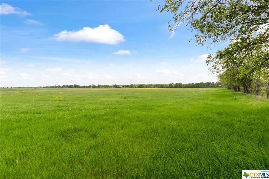 14022 State Highway 317 Property Photo 1