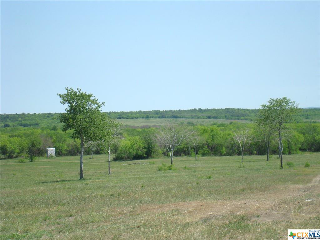 2575 Long Road Property Photo - Lockhart, TX real estate listing