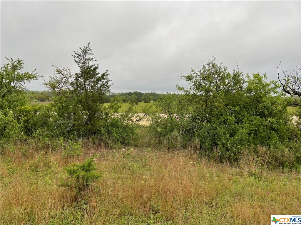 TBD County Road 3640 Property Photo - Copperas Cove, TX real estate listing