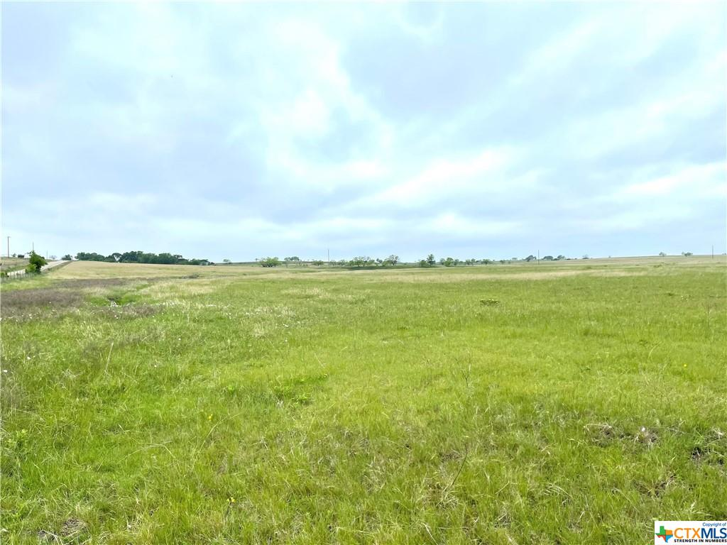 TBD TRACT 7 and 12 FM 1783 Property Photo - Gatesville, TX real estate listing
