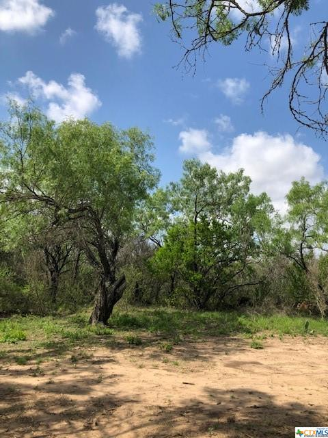 0 County Road 310 Property Photo - Charlotte, TX real estate listing
