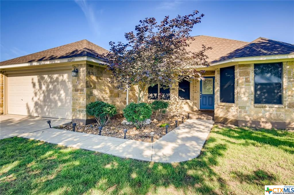 16903 Delana Avenue Property Photo - Elmendorf, TX real estate listing