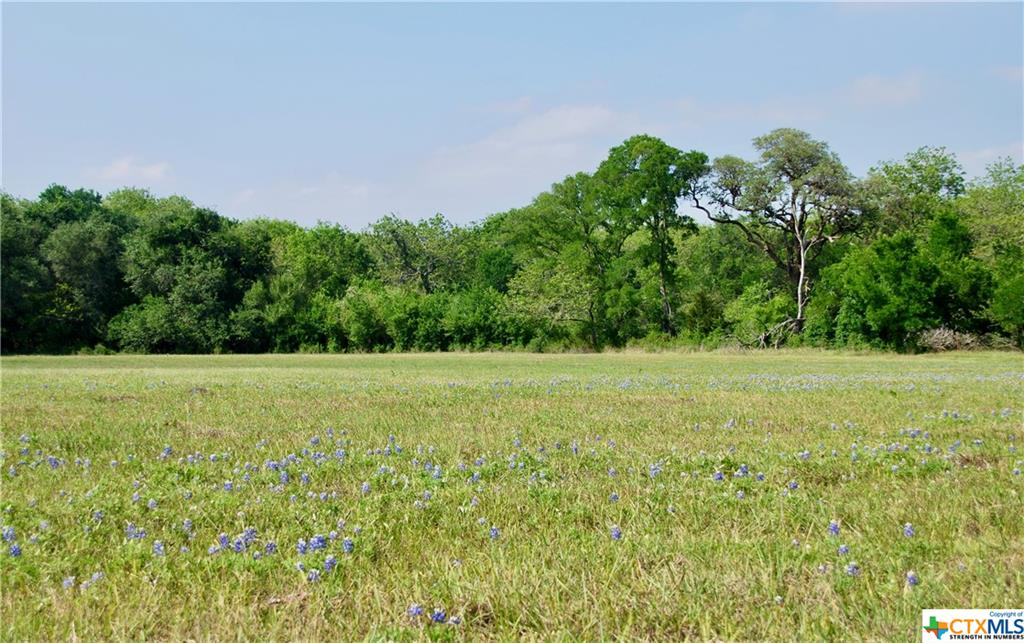 188 County Road 257A Property Photo - Moulton, TX real estate listing