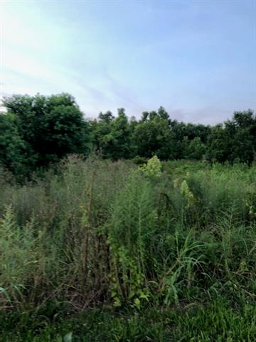 0 Hwy 152 Property Photo 1