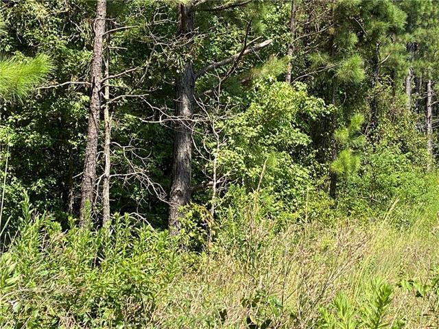 0 Johnson Wells Property Photo 1