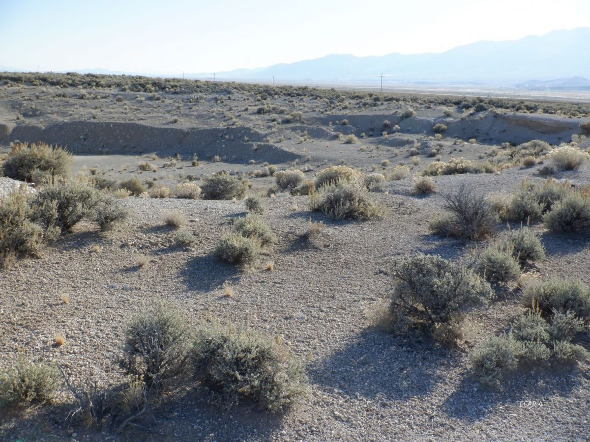 Hgwy 93 Highway Property Photo - Wells, NV real estate listing