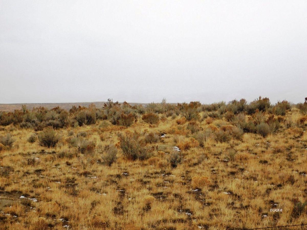 TBD Mesa Verde Drive Property Photo - Ryndon, NV real estate listing