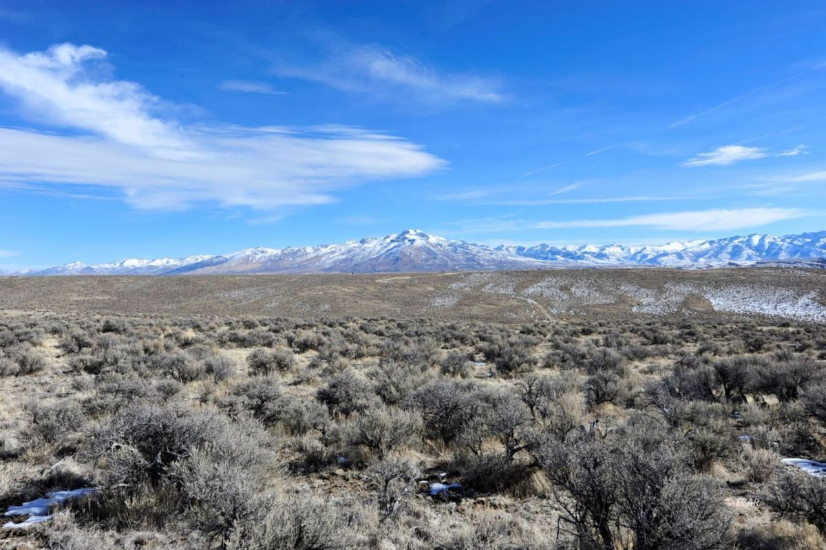 SR228 Jiggs Hwy Highway Property Photo - Spring Creek, NV real estate listing