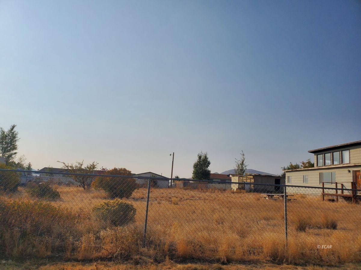 580 Radkey Road Property Photo 16