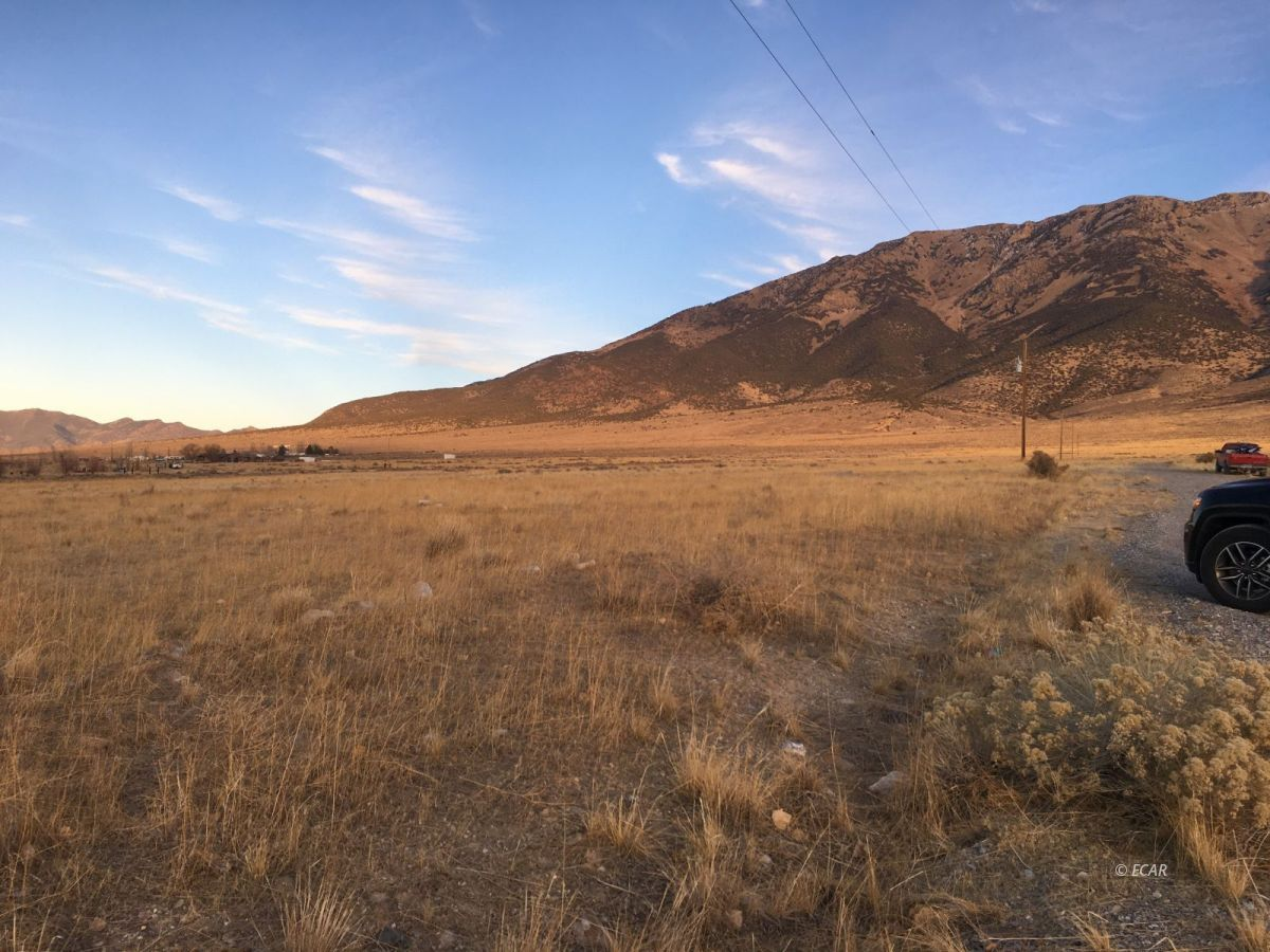 Cottonwood Drive Property Photo - West Wendover, NV real estate listing