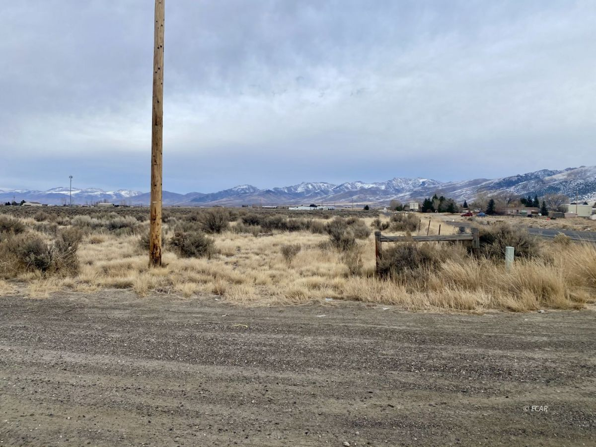 2528 N Pleasant Valley Road Property Photo - Spring Creek, NV real estate listing