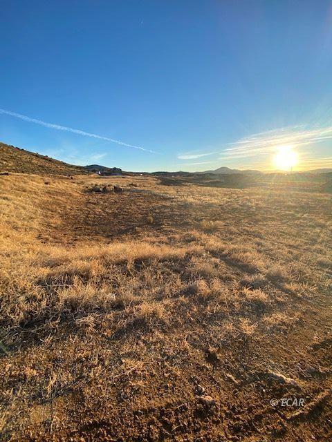 2527 Hamilton Creek Trail Property Photo 16