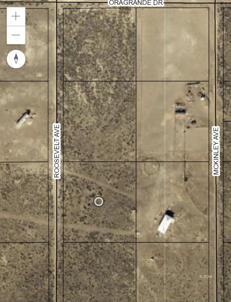 TBD Roosevelt Avenue Property Photo - Ryndon, NV real estate listing