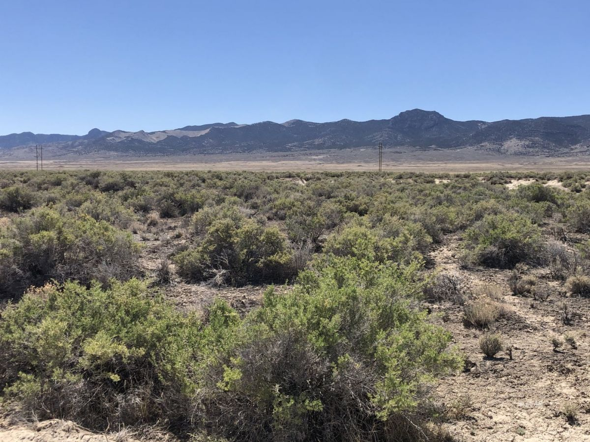 Lot 64 Sun Valley Acres Road #64 Property Photo