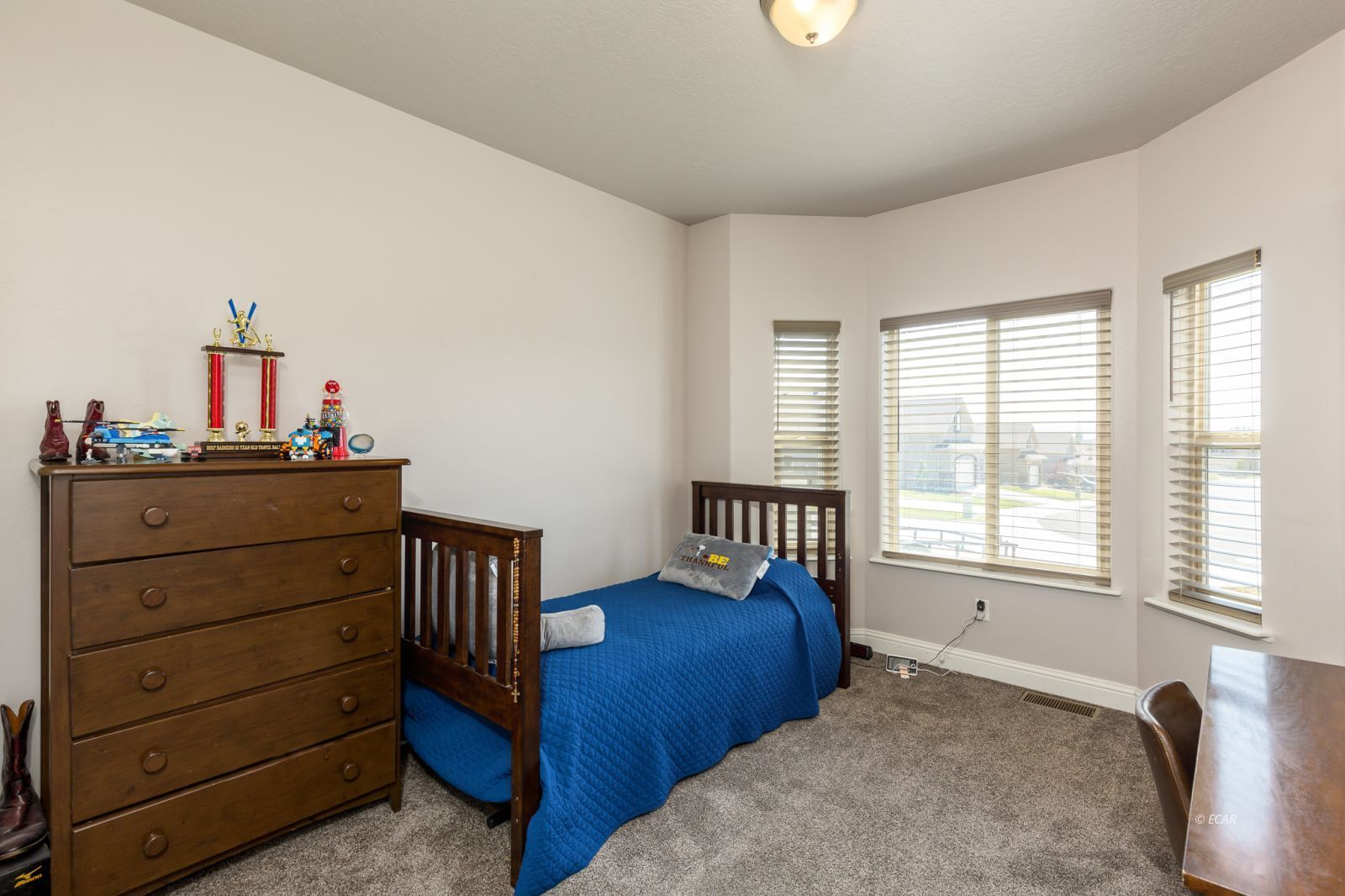 3646 Snowy River Street Property Photo 14