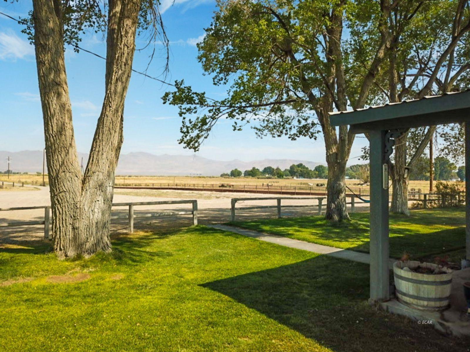 10900 Bridge Street Property Photo 6