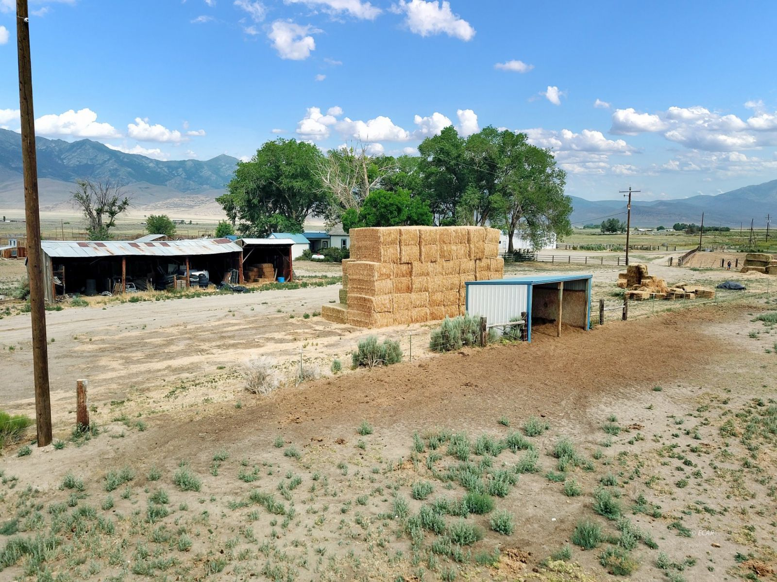 10900 Bridge Street Property Photo 28