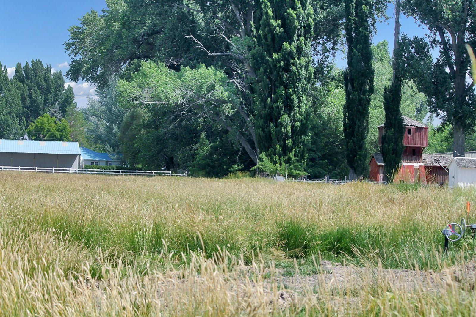10900 Bridge Street Property Photo 45