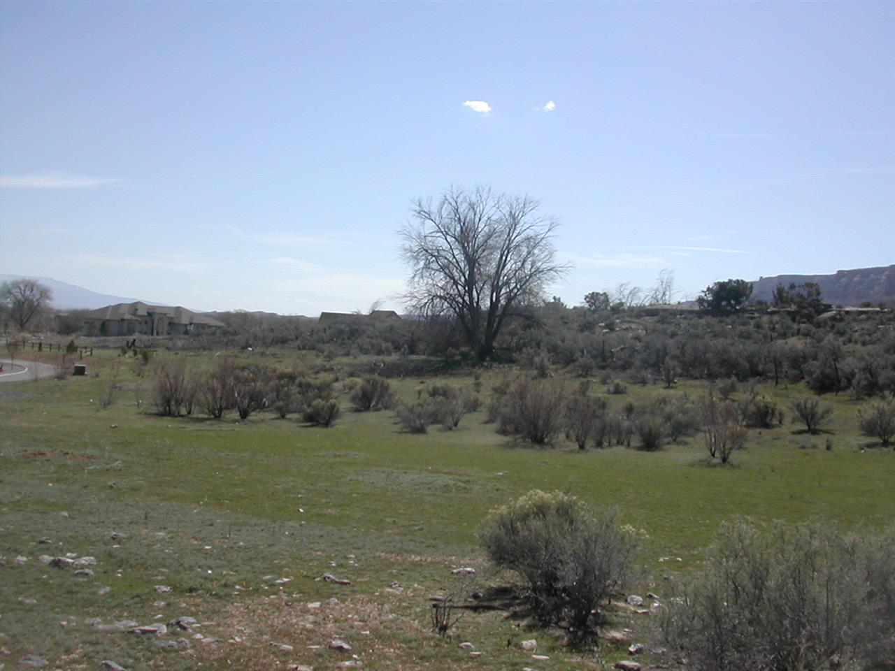 726 Curecanti Circle Property Photo