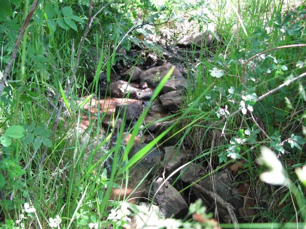 Tbd Lower Bench Trail Property Photo